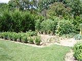 L'école des Coteaux va adopter un jardin.