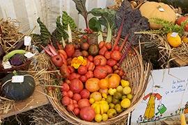 Un festival de parfums aussi pour ces légumes. On aurait presque oublié  que les légumes sentaient si bon !