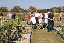 Frédéric récolte les légumes qui seront accommodés par le cuisiner (en blouse blanche, près de la brouette), pour notre plus grand plaisir à tous.