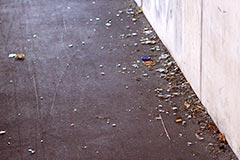 mégots, débris de verre, chewing-gums, déjections canines et autres saletés traînent des semaines...